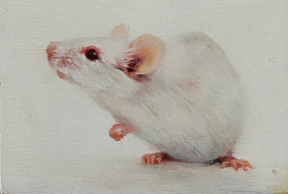 """White Mouse Study #2,"" Rachel Moseley"